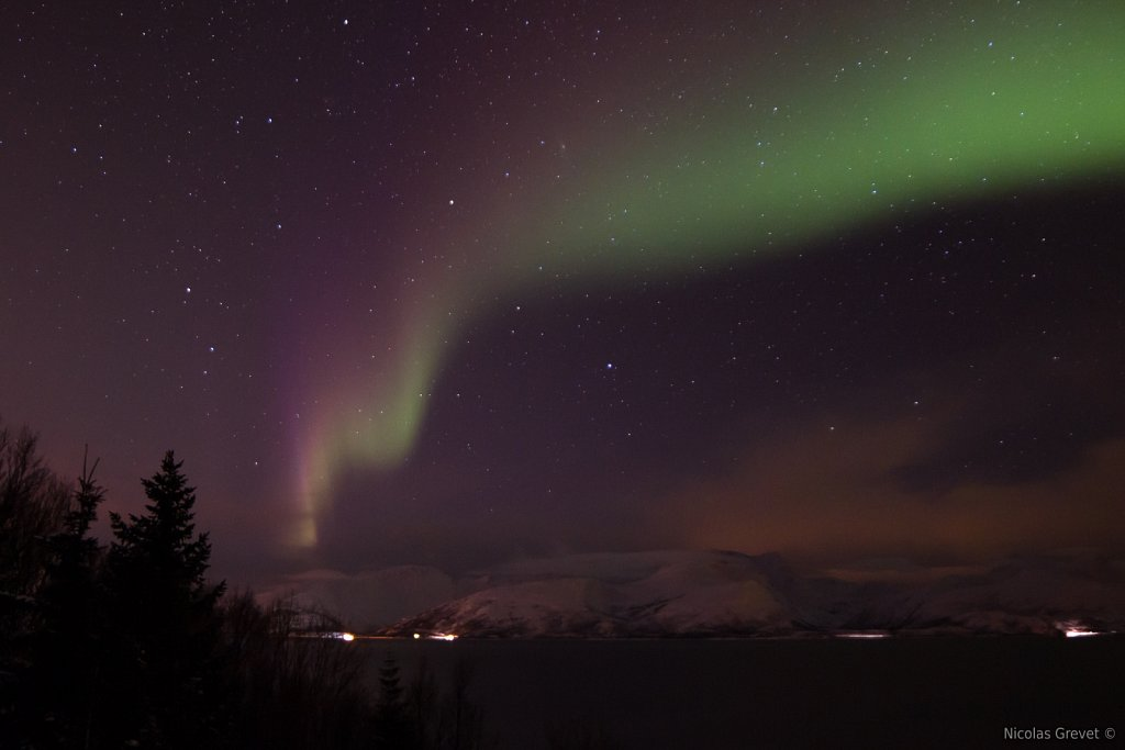 Aurora borealis over Reinøya island