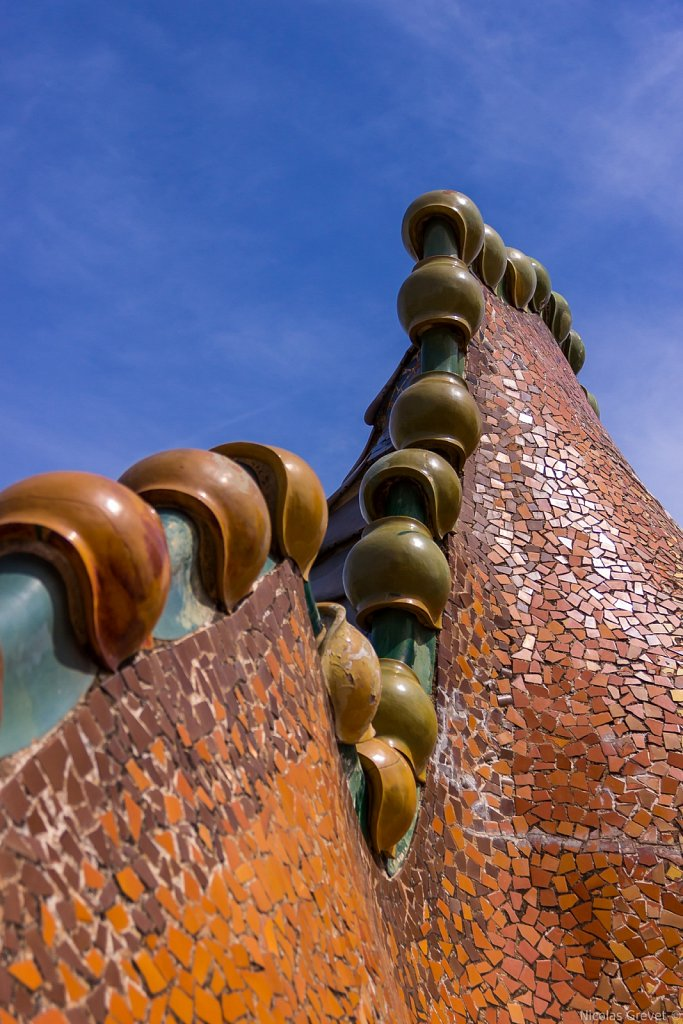 Casa Battló Scaly Roof