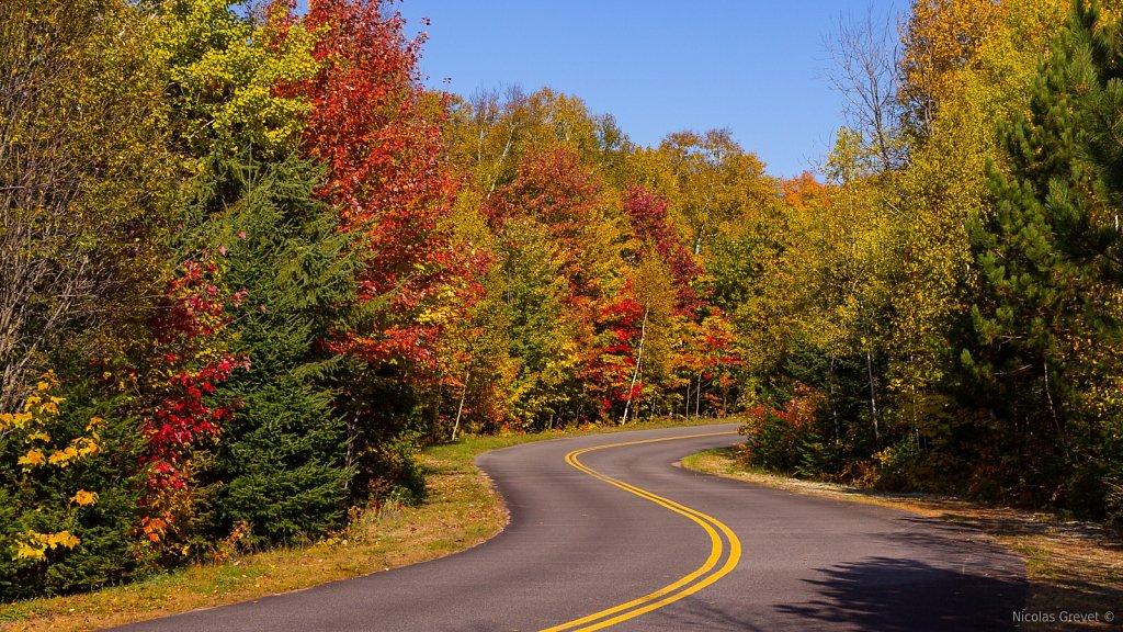 Driving Through Fall 2