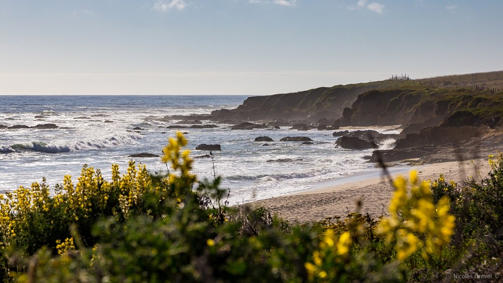 Pigeon Point Beach
