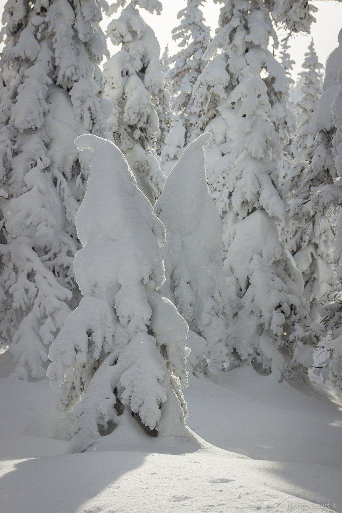 Vallée des Fantômes