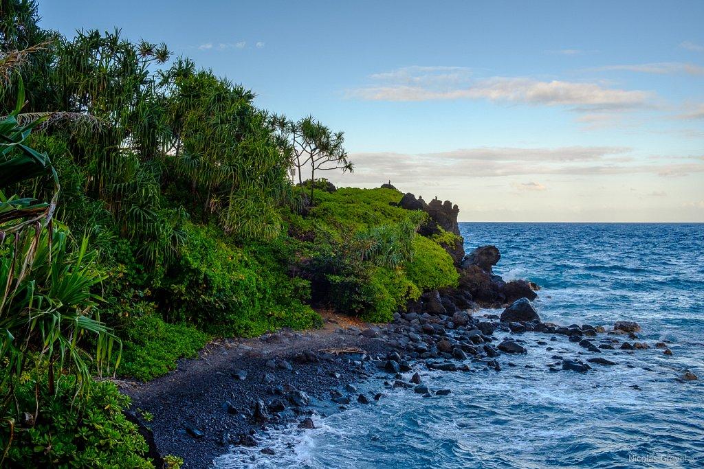 Waiʻānapanapa Coast