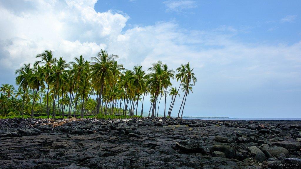 Puʻuhonua